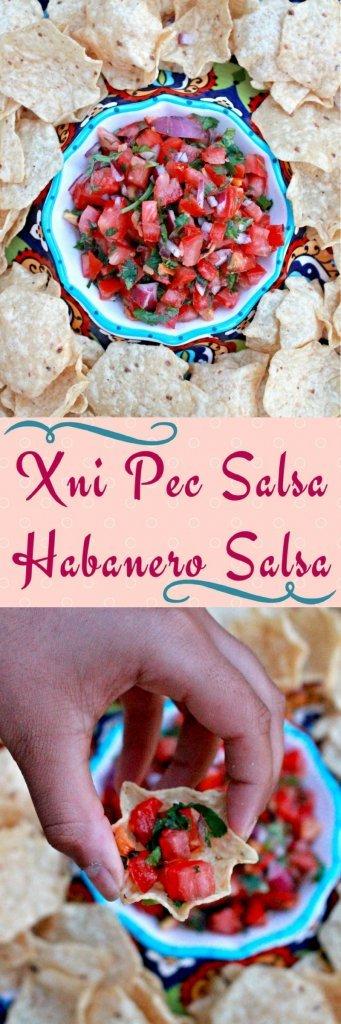 Xni Pec Salsa | Habanero Salsa